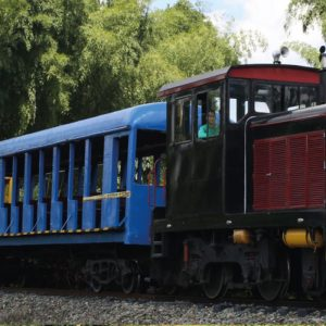 Vagón del Tren del Café